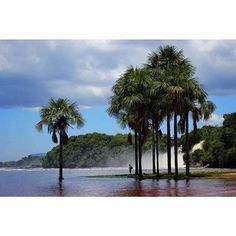 Parque Nacional Canaima,Venezuela