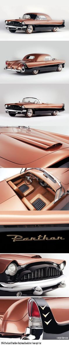 "1954 Packard Panther-Daytona Roadster Concept Car - "" rel=""nofollow"" target=""_blank""> - https://www.luxury.guugles.com/1954-packard-panther-daytona-roadster-concept-car-relnofollow-target_blank/"