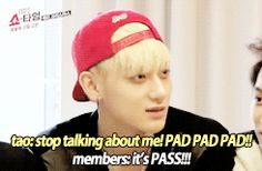 Tao's special talent: Making excuses 9/10