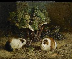"""Guinea Pigs And A Basket Of Grapes""  by Antonio Delle Vedove"