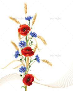 Cornflowers with Poppy Flowers and Wheat by Val_Iva | GraphicRiver