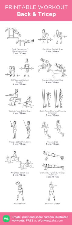 Back & Tricep: my visual workout created at WorkoutLabs.com • Click through to customize and download as a FREE PDF! #customworkout