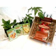 Culinary Herb Growing Gift Set - http://spicegrinder.biz/culinary-herb-growing-gift-set/