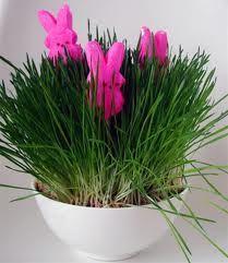 Easter Peeps in grass centerpiece