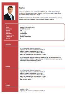 Gratis CV sjabloon van www.cv-voorbeeld.nl