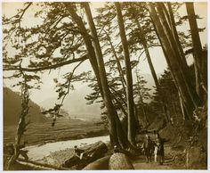 Felice Beato, View on the Tokaido beyond Odowara, Hakoni Mountains in the distance, c. 1870