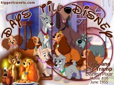 Days till Disney: 16 days Lady and the Tramp Movie # 16 - June 1955 -  #TTDAVCDN Count down to YOUR next Disney vacation at: http://www.tiggertravels.com/ #disneycountdown #vacationcountdown  #Disney #vacation #TiggerTravels #TiggerTravelsSite #TiggerTravelsDotCom  #TiggersTravels