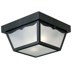 "View the Progress Lighting P5745 2 Light Flush Mount Outdoor Ceiling Fixture - 10"" Wide at LightingDirect.com."