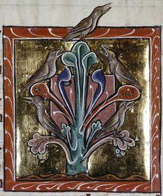 Medieval Bestiary : Jay Gallery