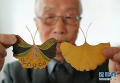 Handmade butterfly created by Gu Houxin with a leaf of a Ginkgo tree. - Handmade butterfly created by Gu Houxin with a leaf of a Ginkgo tree in Suzhou, east Ch - Leaf Crafts, Fall Crafts, Diy And Crafts, Arts And Crafts, Paper Crafts, Tree Crafts, Deco Nature, Painted Leaves, Painting On Leaves