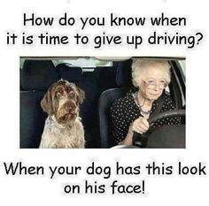 Driving granny