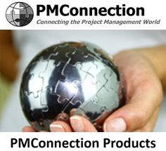 Program Management, Project Management, Microsoft Project, Portfolio Management, Christmas Bulbs, Articles, Holiday Decor, Projects, Log Projects