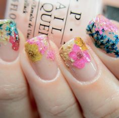 Dried Flowers Flower Nails Nail Designs Cute Fancy