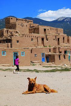 One of Taos Pueblo's many doggies...