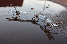 Small Handmade Metal Dragonfly  -made from various metal pieces. -welded together strongly