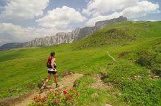 La corsa in montagna è una specialità sia maschile sia femminile dell'atletica leggera che si svolge in ambiente montano, a quote relativamente moderate che raramente superano i 2 000 metri. In Italia è parte integrante del calendario sportivo della FIDAL, insieme alle competizioni su pista, su strada, di marcia e corsa campestre.