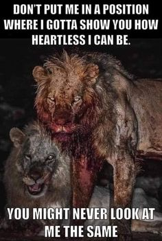 Wisdom Quotes, True Quotes, Great Quotes, Quotes To Live By, Motivational Quotes, Inspirational Quotes, Fact Quotes, Awesome Quotes, Lone Wolf Quotes