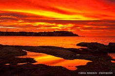 Bondi Beach  by Bill Morris from frothers.com.au