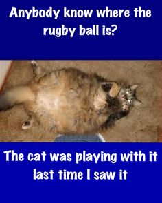 Anybody seen the rugby ball?
