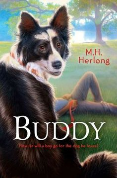Buddy by M. Herlong- Twelve-year-old Li'l T and his family face great losses caused by Hurricane Katrina, including leaving Buddy, their very special, three-legged dog, behind when they must evacuate. Used Books, My Books, Buddy Go, Old Yeller, Realistic Fiction, Dog Stories, Animal Books, Books For Teens, Reading Levels