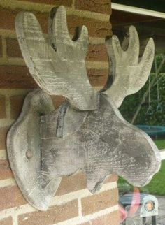 Moose head white gray wood