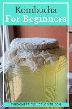 This post will share with you how to begin brewing kombucha tea in 7 easy steps. Read on to get your scoby on, Wildflowers. I cannot say I have ever had kombucha. As a working mom of small children… Kombucha Scoby, How To Brew Kombucha, Benefits Of Kombucha, Making Kombucha, Kombucha Drink, Kombucha Flavors, Health Benefits, Fermentation Recipes, Canning Recipes