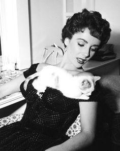 Elizabeth Taylor + kitten