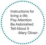 I could fill this board with quotes from Mary Oliver.