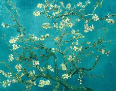 Van Gogh Branches with Almond Blossom HD Print Oil Painting Art on canvas HDY108 #Impressionism