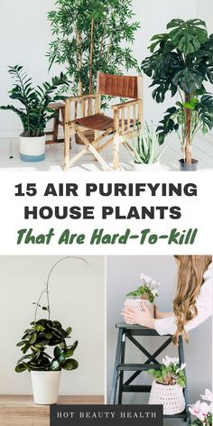 The best air purifying plants that are super low maintenance and hard to kill. According to NASA, these types of houseplants (i.e. sansevieria trifasciata, peace lily, etc) are non-toxic and cleanses the air (perfect for asthma and allergy sufferers). Some even remove air-borne mold. Place anywhere inside your home as decor like bedrooms, bathroom and kitchen or at the office. Many need don't need the sun to thrive indoors and are also pet safe. #houseplants #airpurifyingplants #plants Best Air Purifying Plants, Types Of Houseplants, Getting Back In Shape, Peace Lily, Healthy Diet Recipes, Pet Safe, Health And Fitness Tips, Air Purifier, Indoor Plants