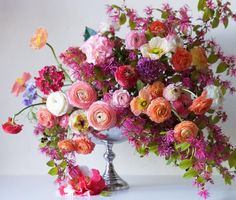 from Tulipina