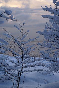 December II | Flickr - Photo Sharing!