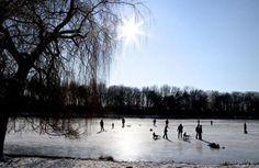 Auwaldsee in winter/hockey/ice skating, Ingolstadt, Bavaria, Germany