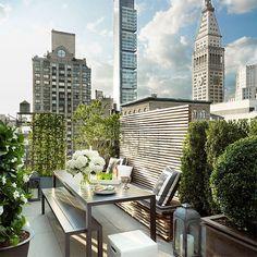 Timothy Whealon's NYC penthouse terrace / ph: Joshua McHugh