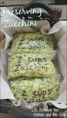 Preserving Zucchini One of the things I love about having a garden is the harvest in the fall. One of my favorite things that we get from our garden is zucchini. Mere words cannot express how much our family loves zucchini! As it gets later in the fall, Freezing Vegetables, Fruits And Veggies, Freezing Fruit, Freezing Squash, Freezing Tomatoes, Parmesan Zucchini Chips, Zucchini Bites, Zucchini Lasagna, Cheesy Zucchini Bake
