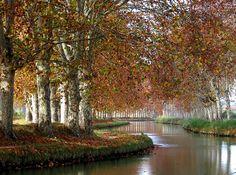 Canal du Midi, near Capestang.