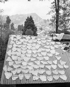 Underwear on the rooftop of St. Paul's School, Darjeeling. Image: @martinparrstudio 1984