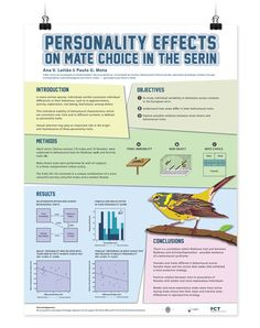 Like the blocks to define sections | Design scientific research posters.