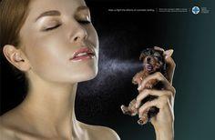 Aidez-nous à lutter contre les tests cosmétiques / Lowe Pirella Fronzoni et Leo Burnett