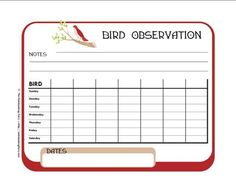 Record bird observations on this free printable page.