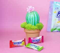 I love HI-CHEW candy from Japan and I'm thrilled to partner with them to share our fun new DIY Potted Easter Egg Cactus celebrating their Spring Mix Bag.