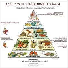 The Harvard Medical School/School of Public Health Healthy Eating Pyramid (and plate). Links to a very long article about the shortcomings of the USDA pyramid and plate, and the changes in this evidence-based revision. Sport Nutrition, Nutrition Sportive, Nutrition Education, Healthy Nutrition, Healthy Fats, Healthy Life, Nutrition Club, Strawberry Nutrition, Nutrition Chart