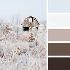 Color Palette #2591 More