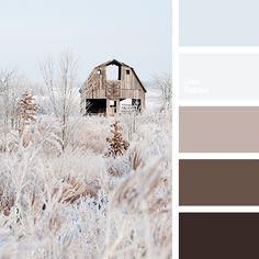 Color Palette #2591
