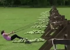 New trending GIF on Giphy. fail ouch watermelon catapult watermelon catapult. Follow Me CooliPhone6Case on Twitter Facebook Google Instagram LinkedIn Blogger Tumblr Youtube