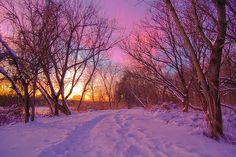 Winter. by Kristen Collier, via Flickr