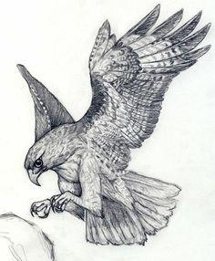 Red Tail Hawk Tattoo Idea
