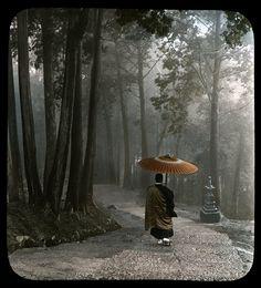 La via con monaco