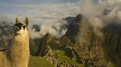 Peru Travel Information and Travel Guide - Lonely Planet