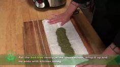 Cannabis Training University - YouTube